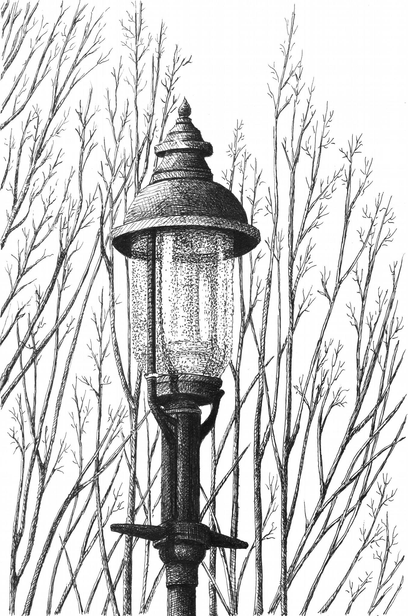 lamplight no 3.jpg