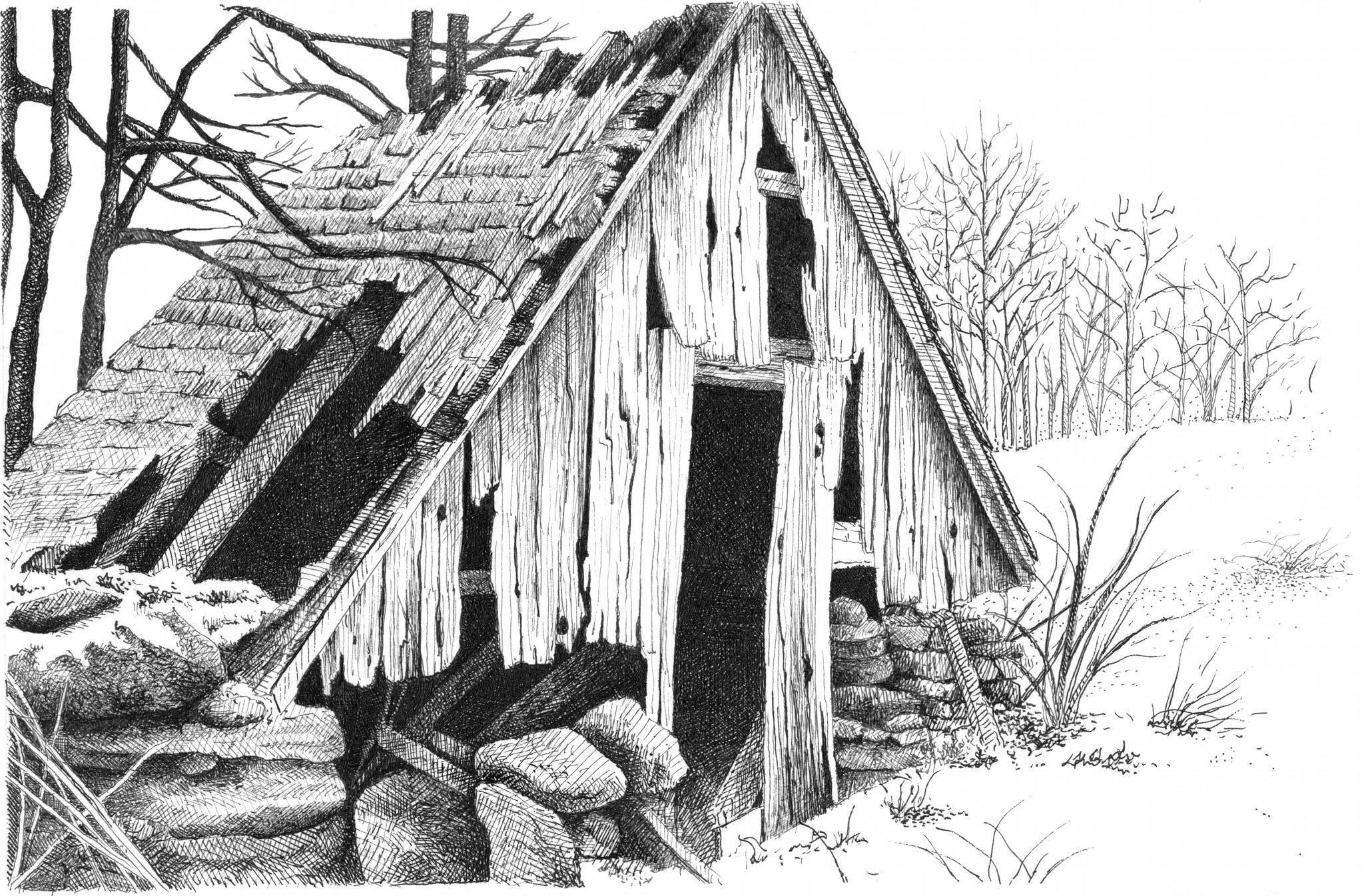 the-tool-shed.jpg