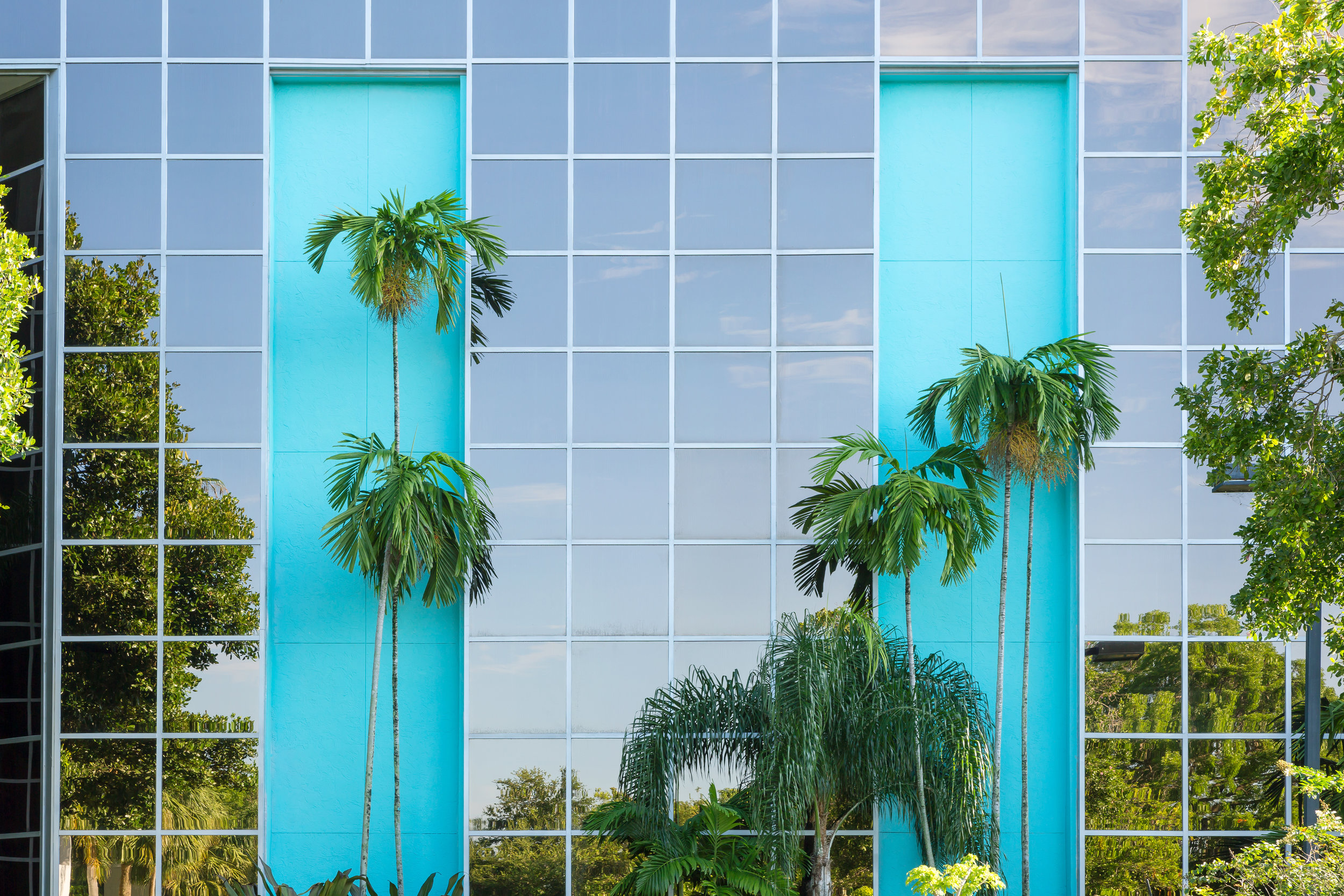Sawgrass-Palms-Blue-Wall.jpg