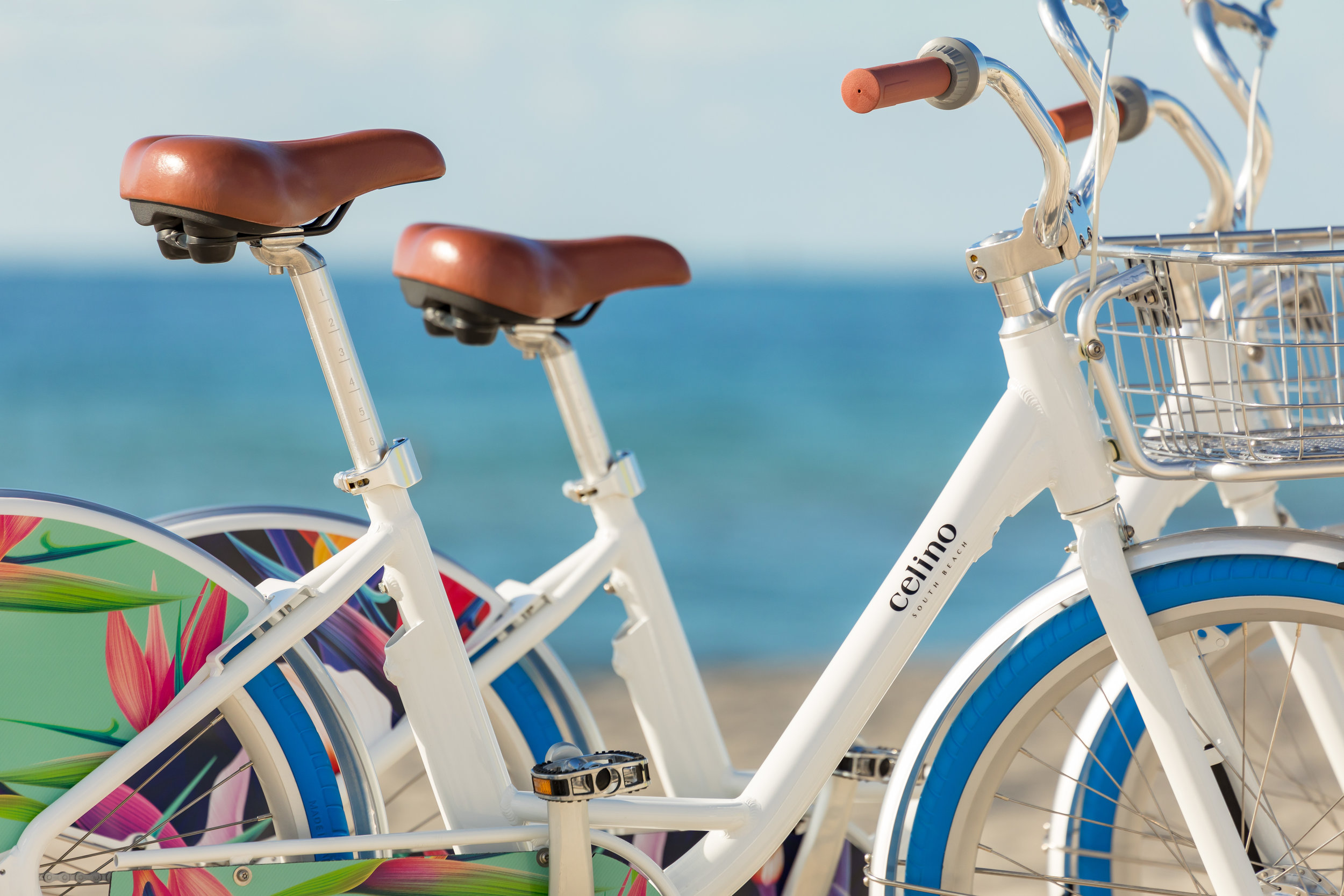 Celino-Bike-2323.jpg