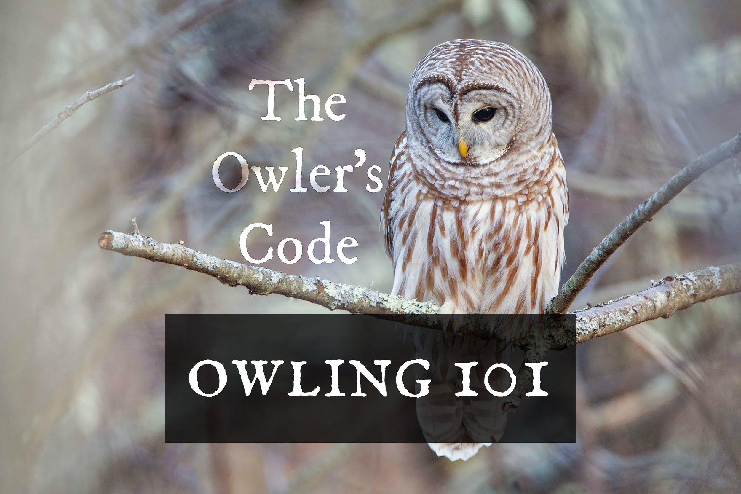 owling101-code.jpg