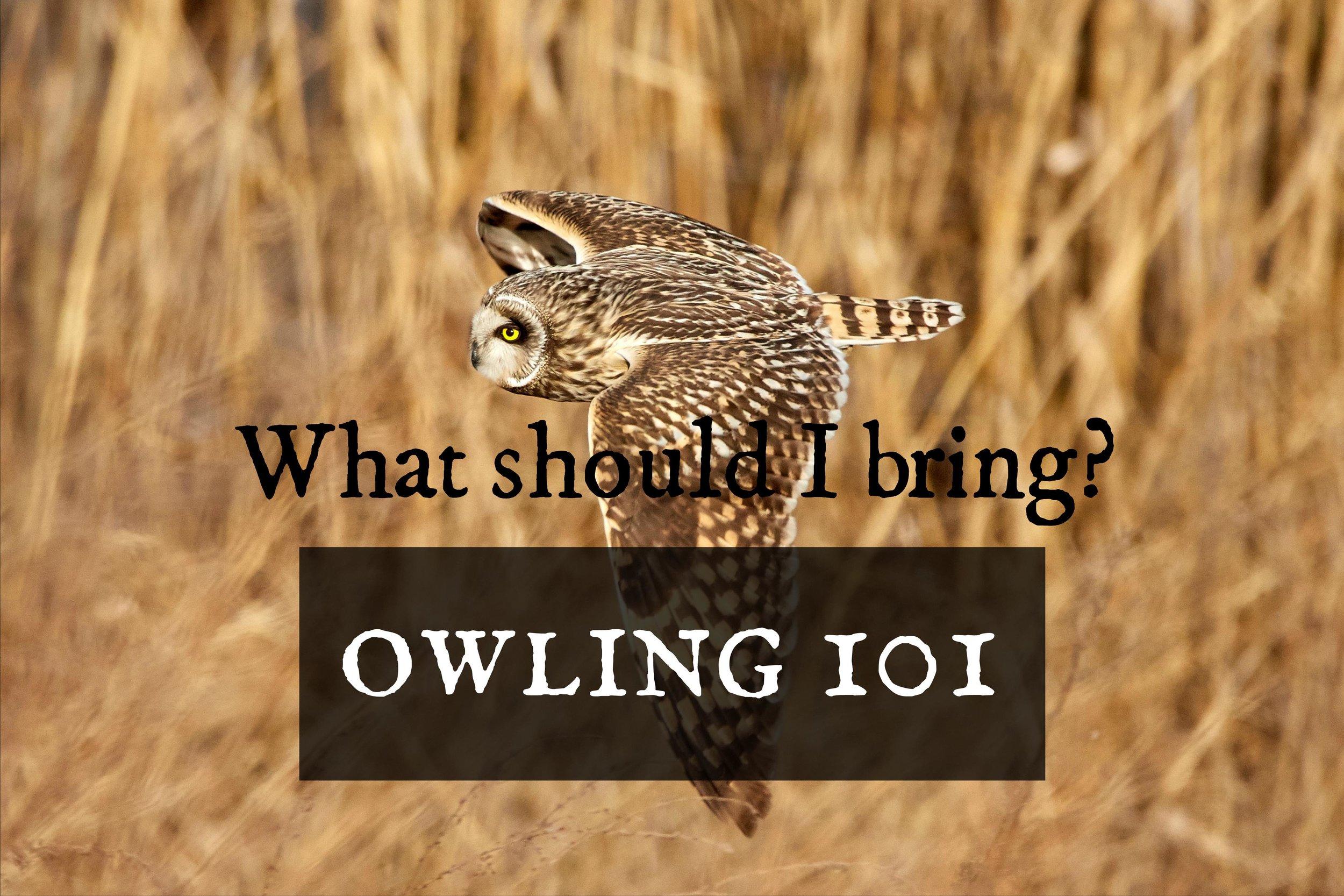 owling101-whattobring.jpg