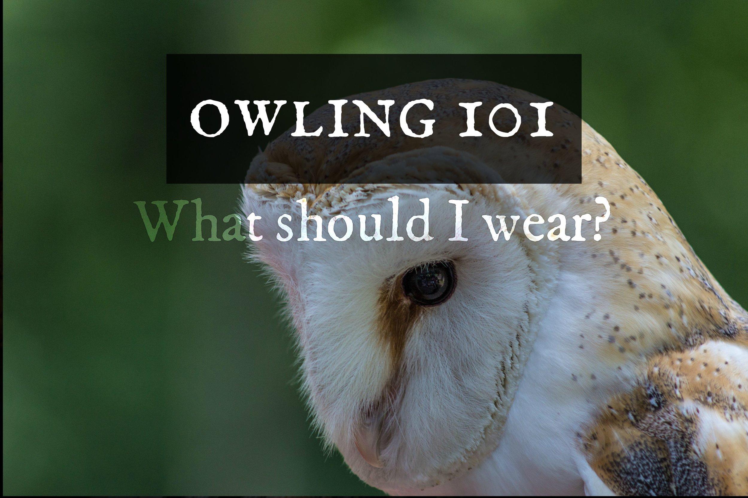 owling101-whattowear.jpg