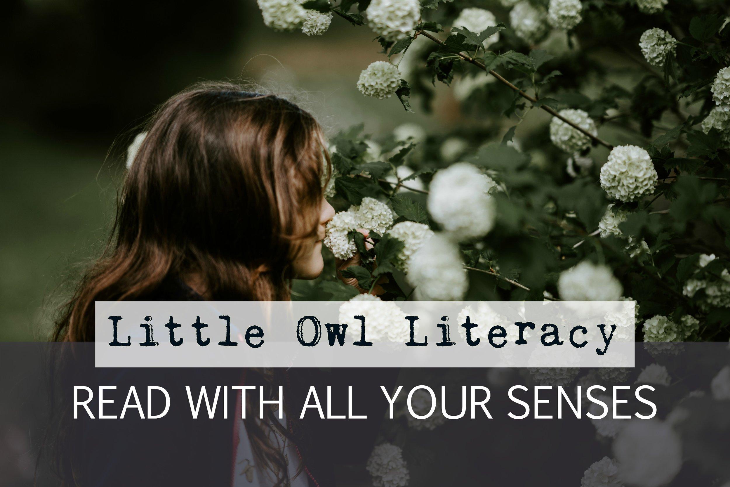 littleowl-senses.jpg
