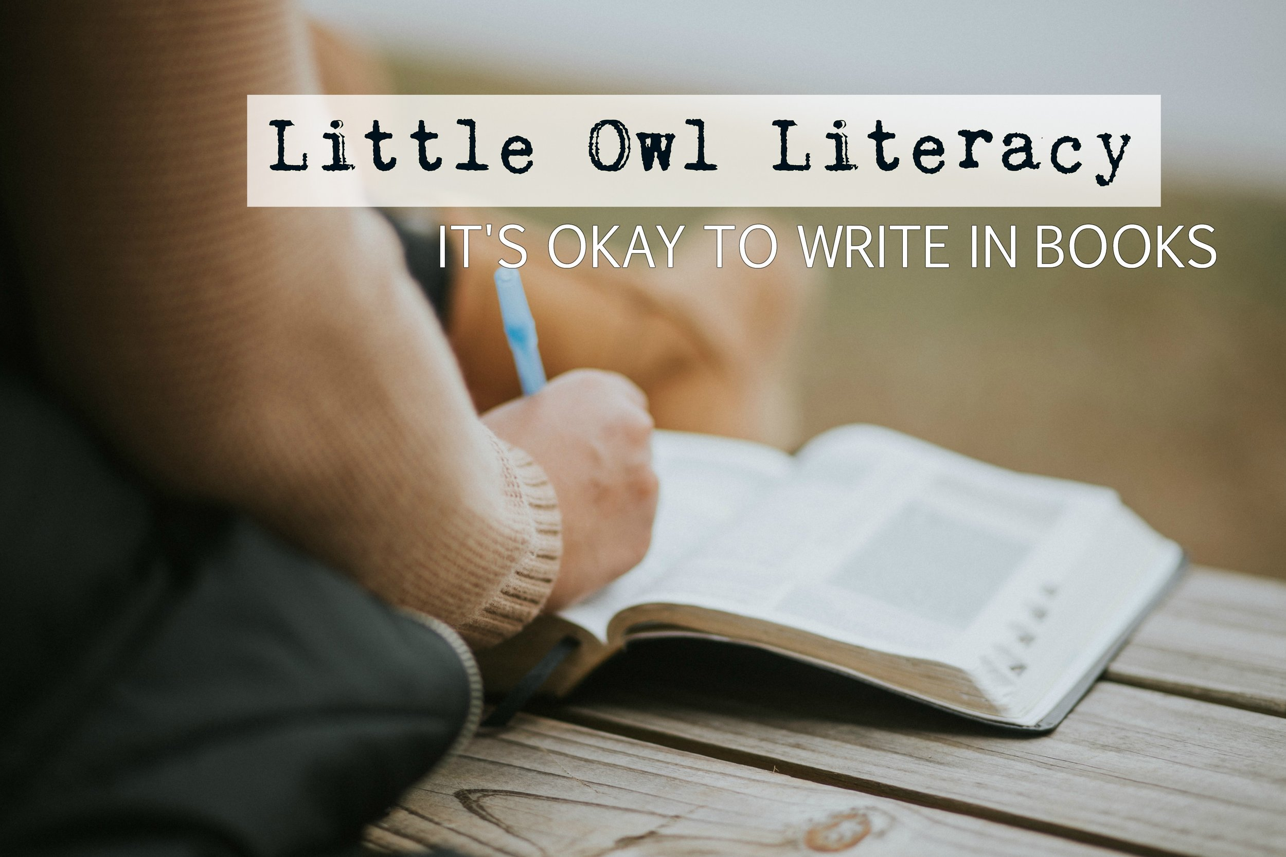 littleowl-writeinbooks.jpg