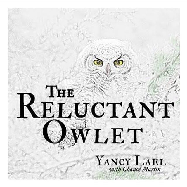 This Sunday, I'll be at #lavalandsvisitorcenter with @discover_your_forest leading the Jr. Ranger Program with the lovely Karen Gentry. Please come join our reading circle and activities! . We'll be looking at owl pellets, and making owl binoculars, and other activities. . Contact Discover Your Forest or look at my website for more details. See you at 11 on Sunday! . . . #inbend #bendoregonlife #bendoregon #authorevent #optoutside #indieauthor #owls #childrensbooks #education