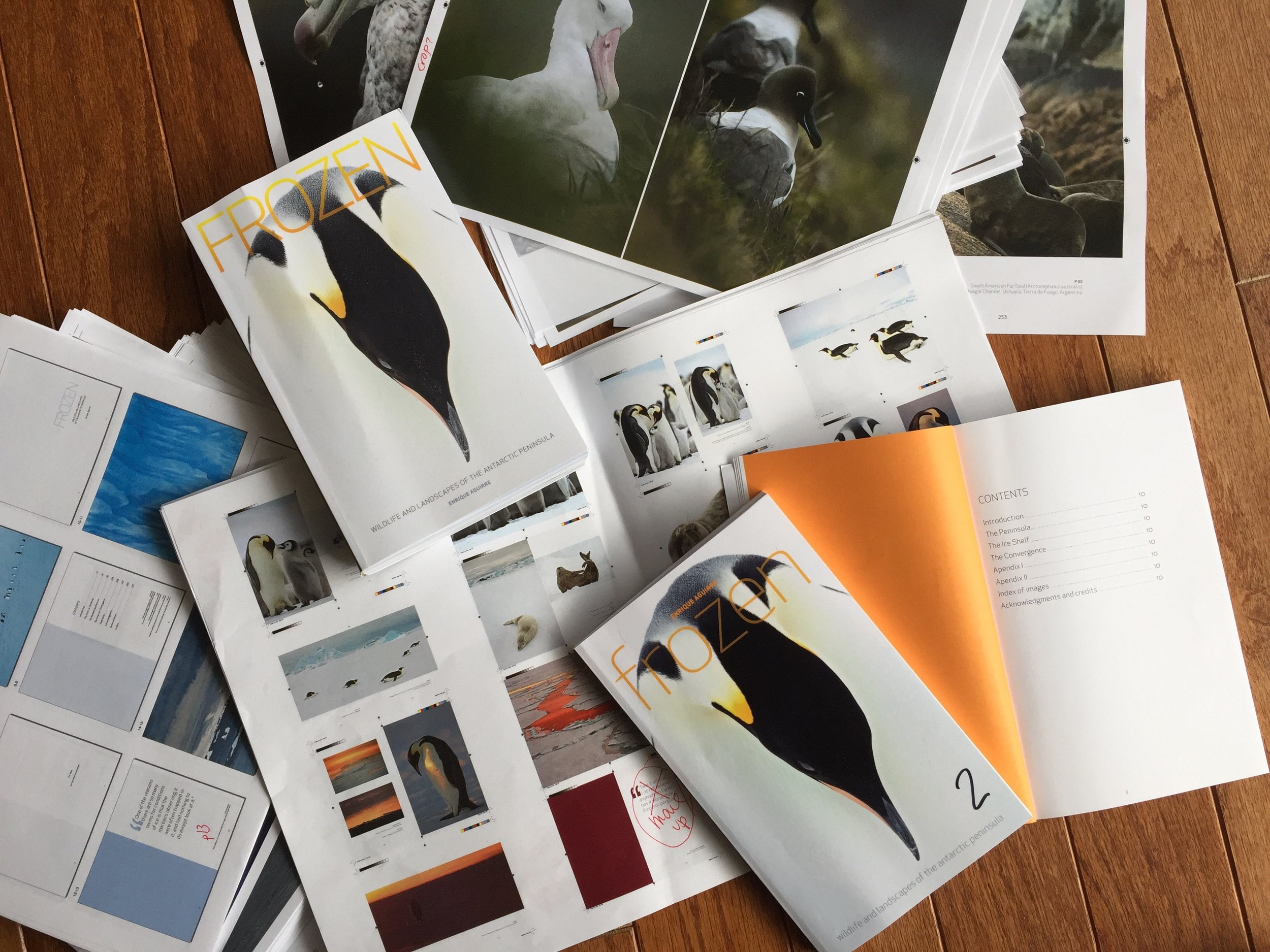 Cover options, page layouts, marked up edits, and printing / binding prototypes for the pocket edition
