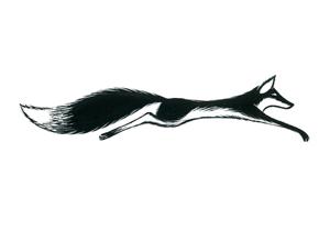 ill-fox.jpg