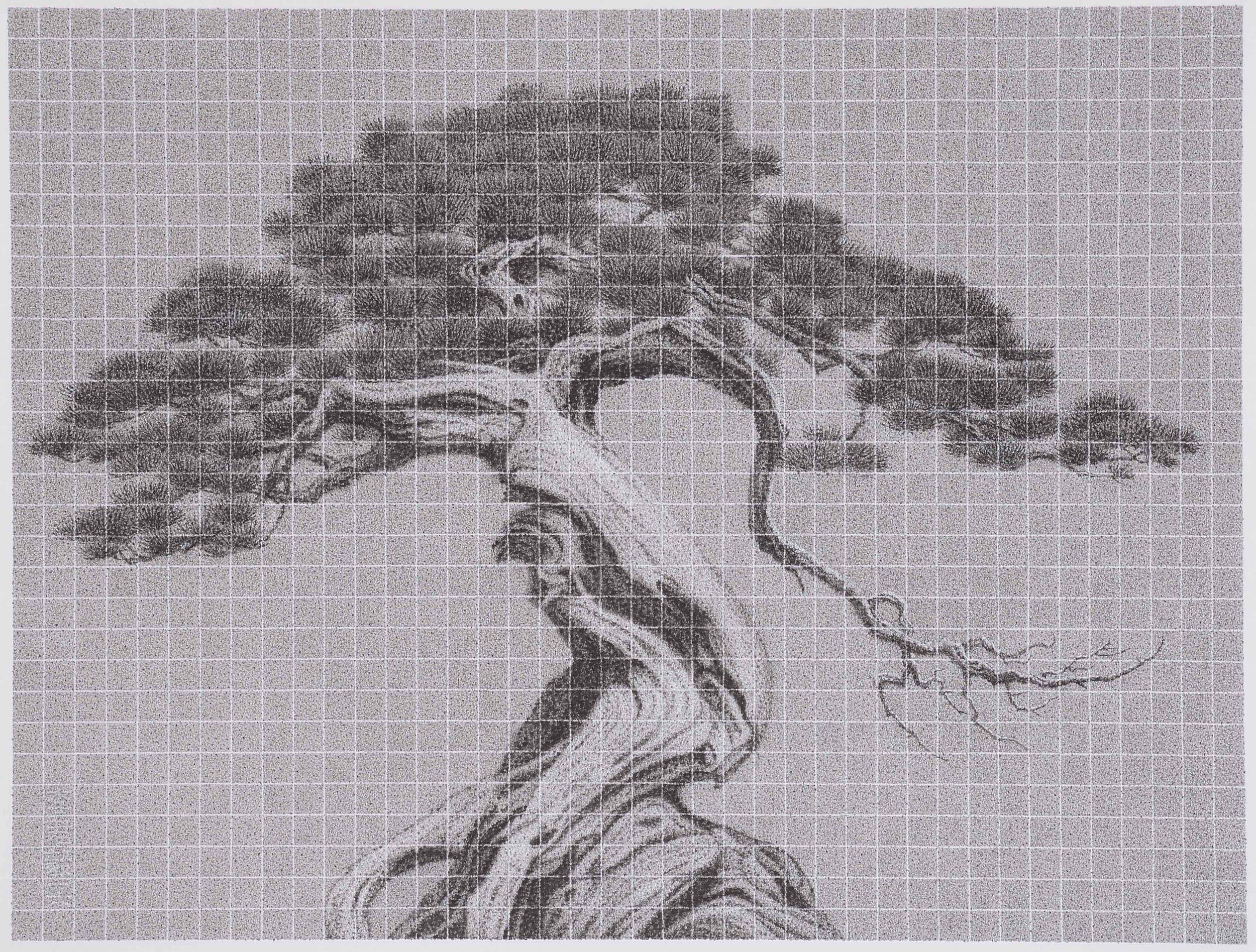 同生共榮     李君毅   54.5x851cm   2016   水墨紙本