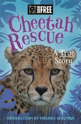 Cheetah rescue.jpg