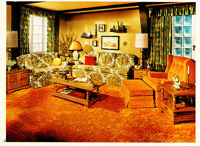 70's Orange Shag Carpet Contempt