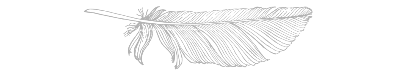 feather long-min.png