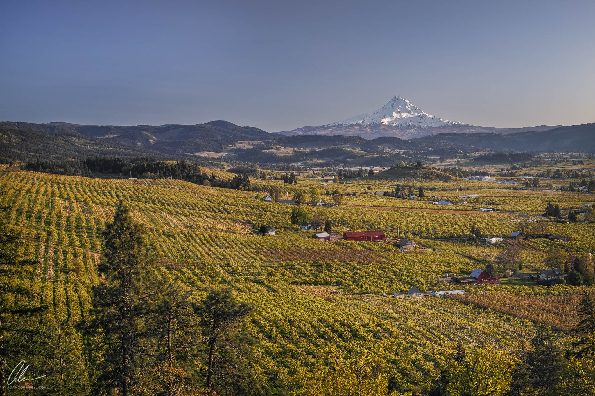 Mt. Hood & Orchards