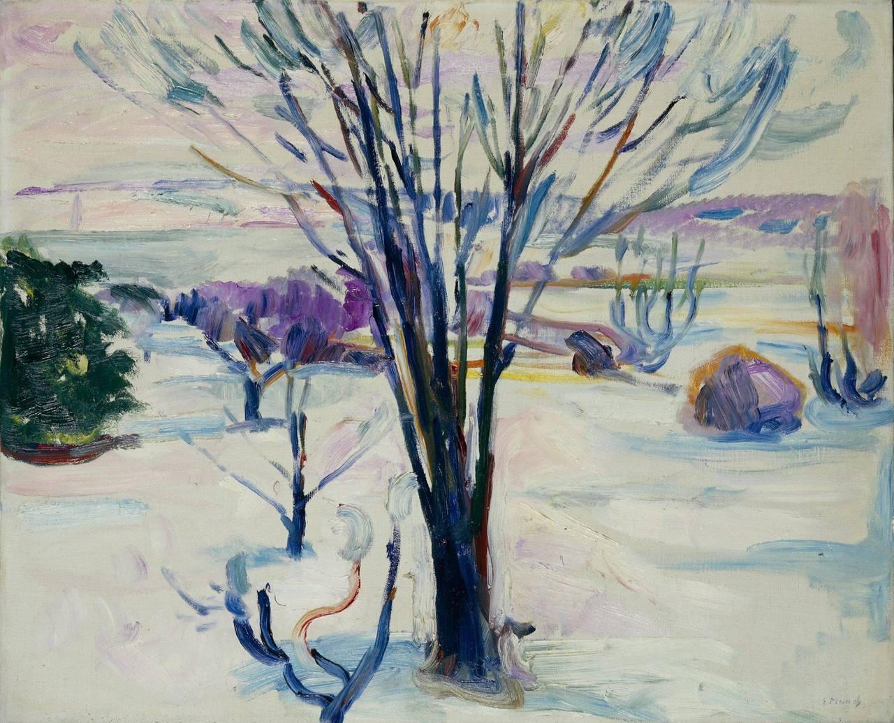 Vinterlandskap på Jeløy