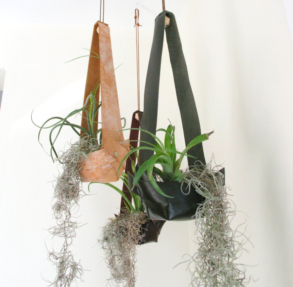 Air plant display Leather planter Hanging Planter in Embossed Walnut Salvaged Leather Hanging Planter for Air Plants