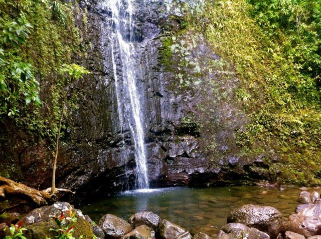 Manoa-Falls-Pool.jpg