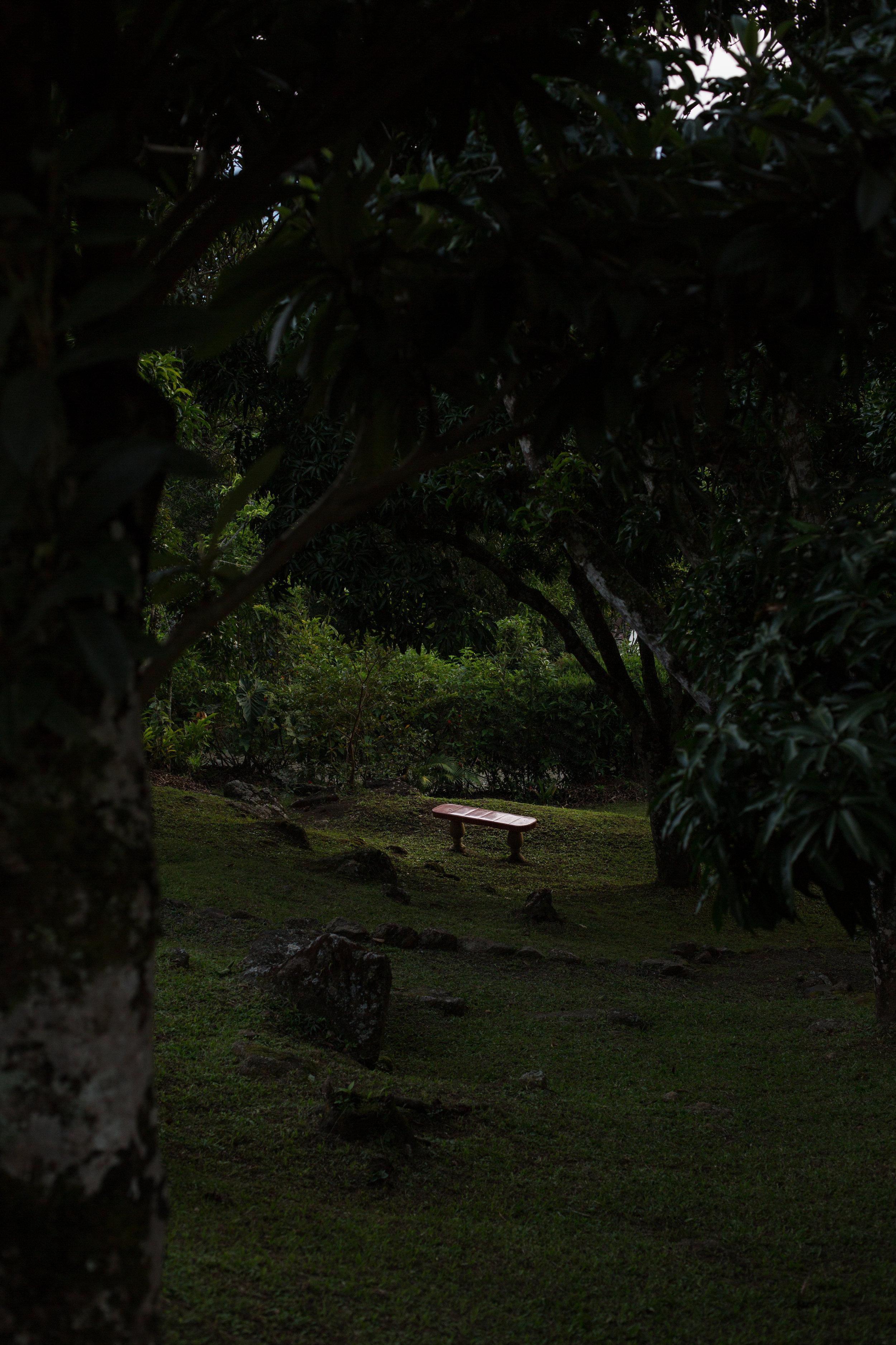 Medellin_LaFinca_2017_6-2.JPG