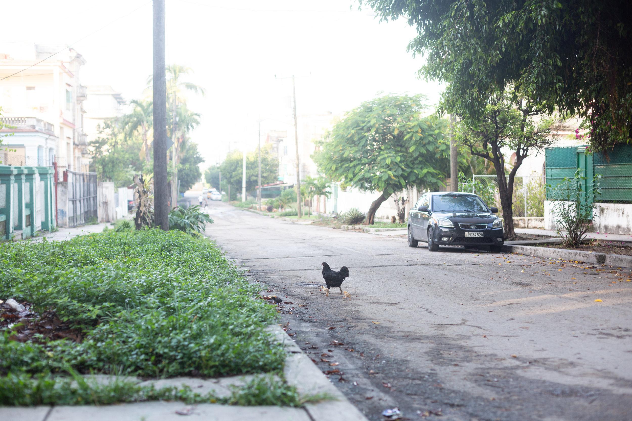 Cuba_Havana_2017_2.JPG
