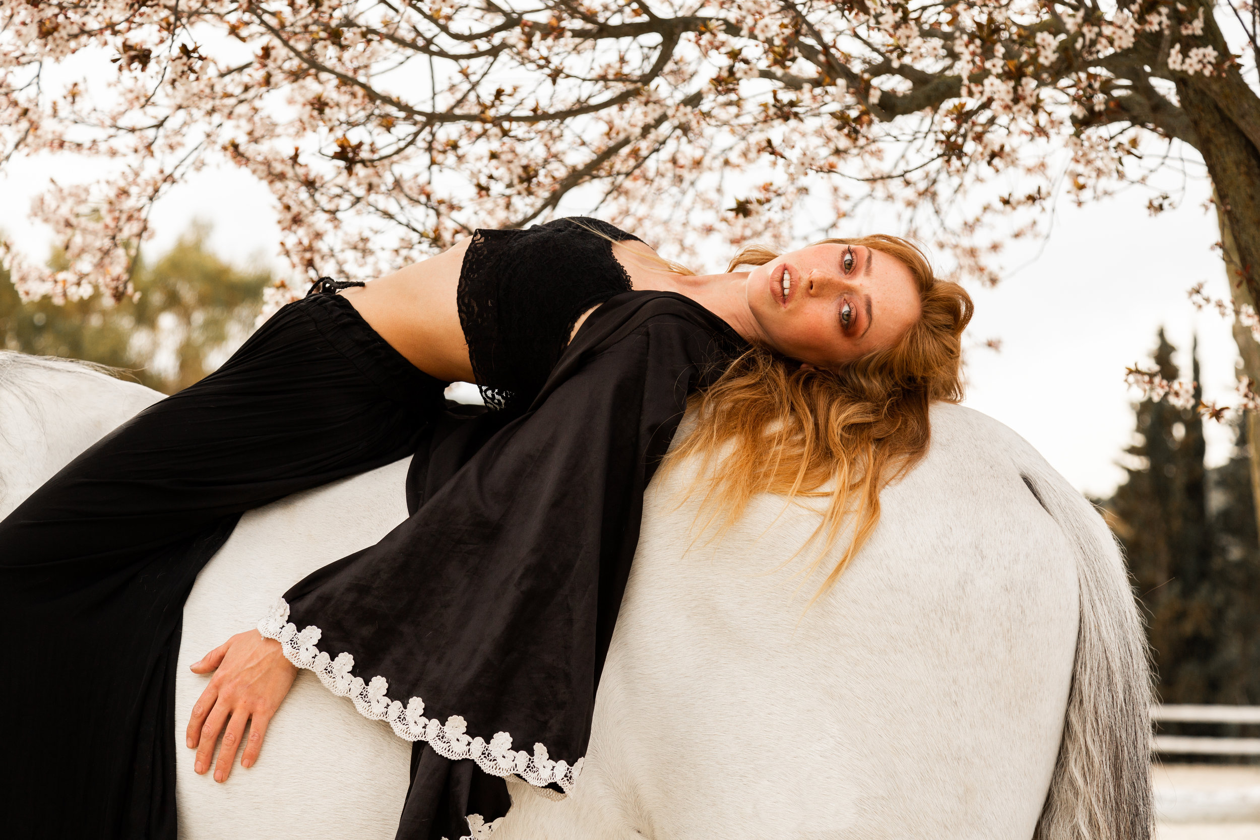 Helene_HorseEditorial_2019_16.JPG