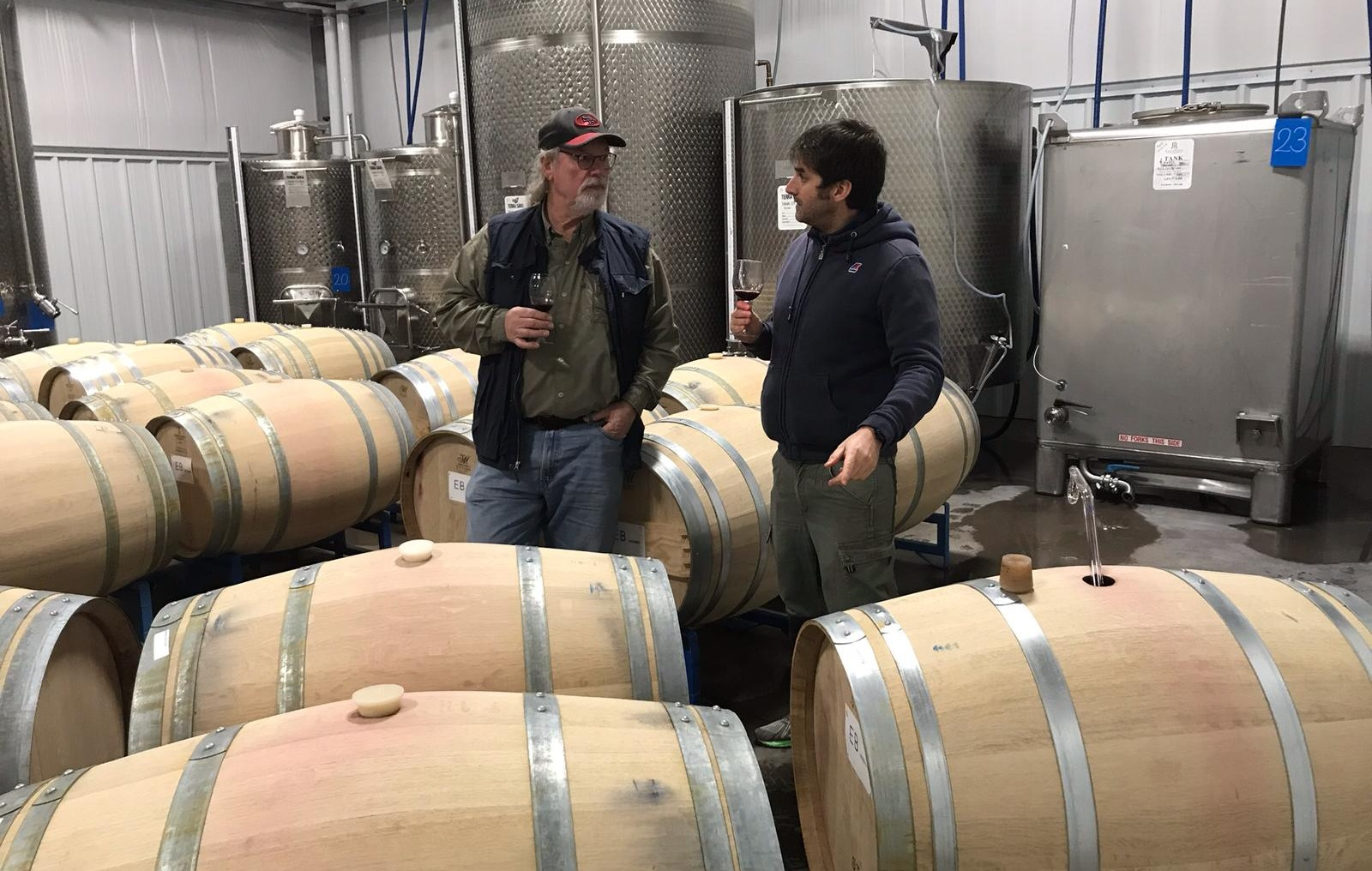 Winery scene