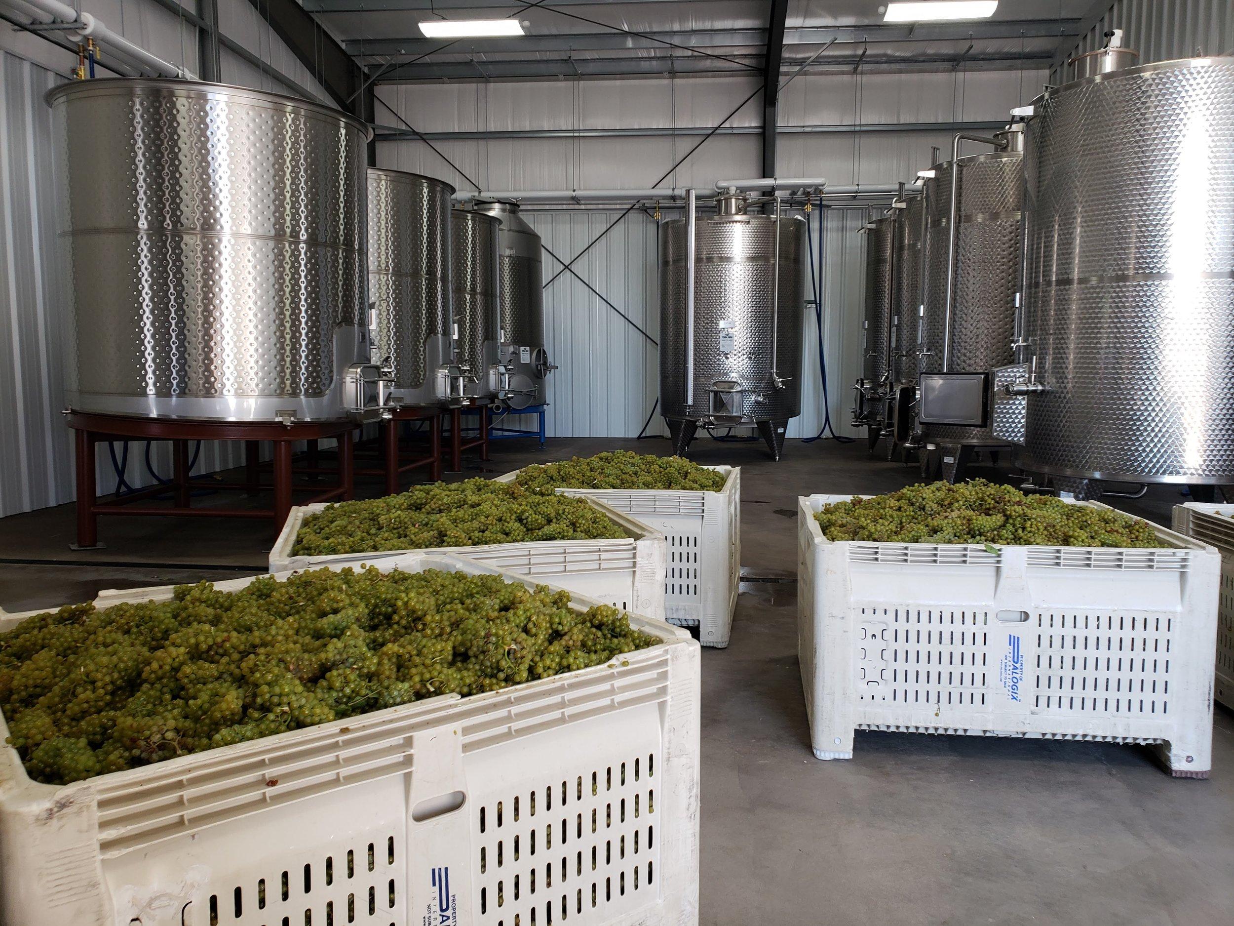 Winery Interior