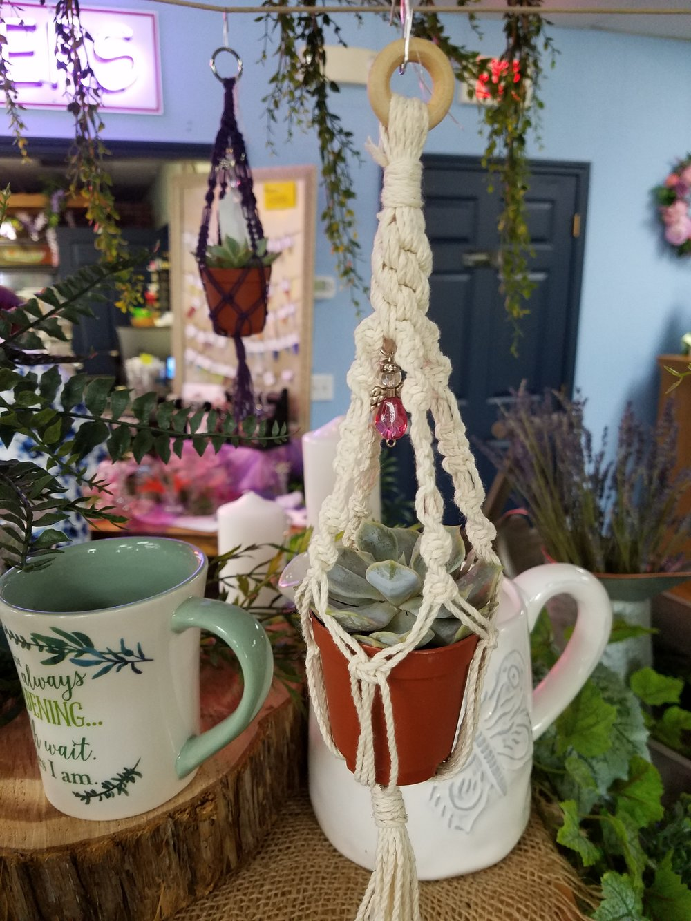 Mini Macrame Plant Hangers Orchard Hills Floral Gifts
