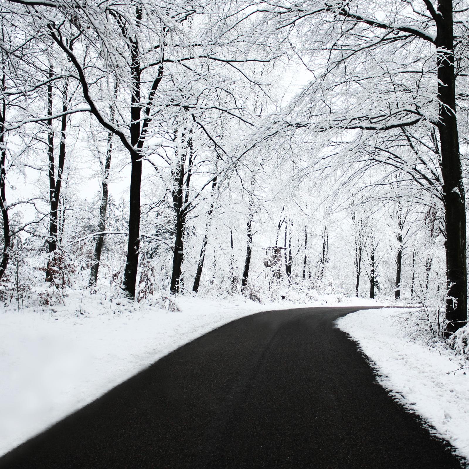 422-winter-snow-hd-pics.jpg