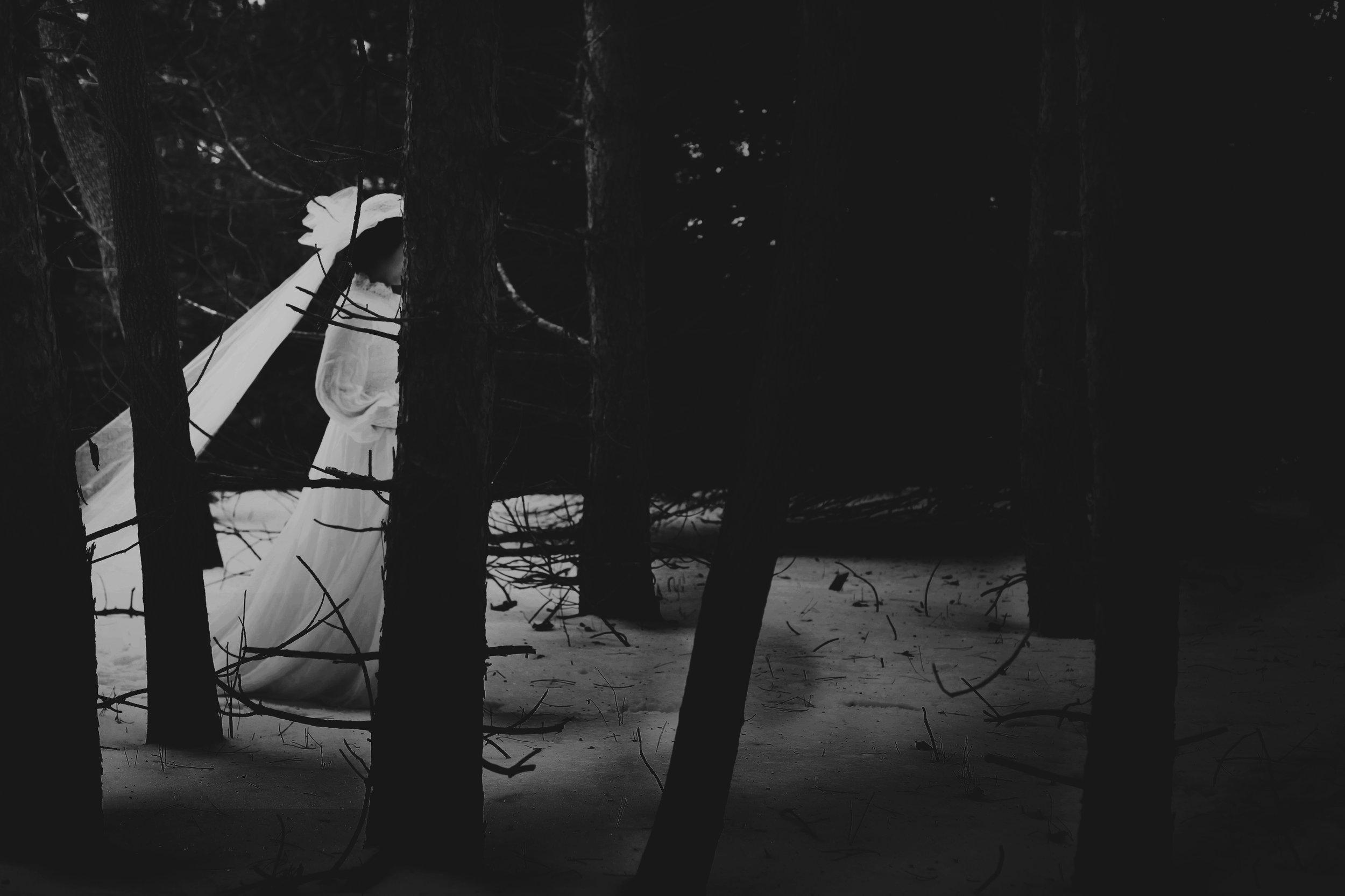 dark_woods.jpg
