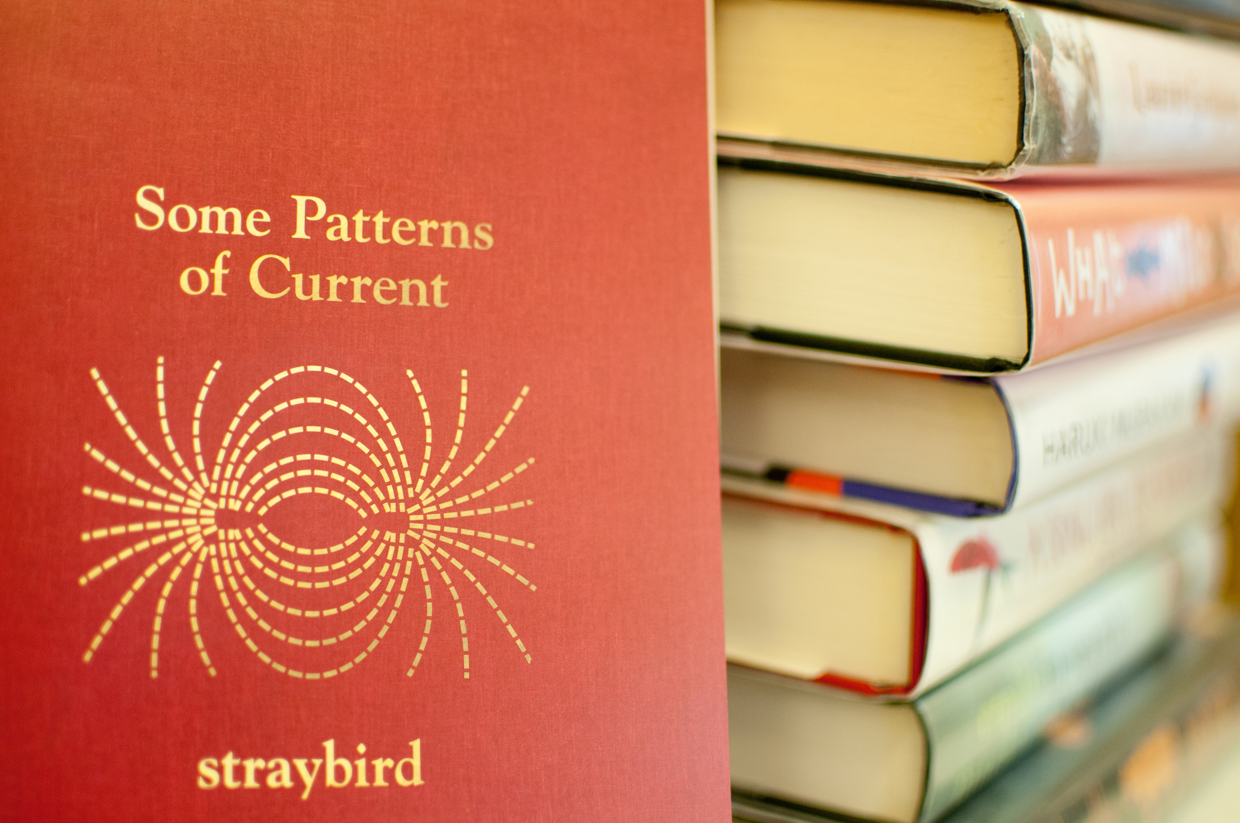 Some Patterns of Current-Hampton Library copyright Tricia de Courcy Ling (22 of 80).jpg
