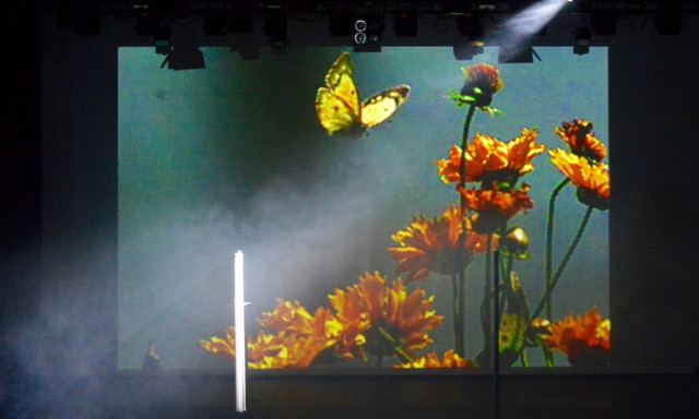 Image shows on-stage video experiment for Sulphur by John Hunter at ACCA
