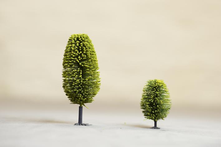 Two Trees Common Salt_Credit Paul Samuel White.jpg