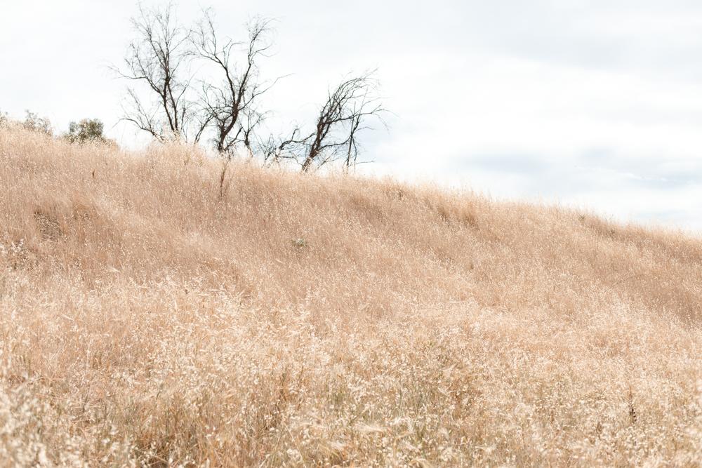 hiking-the-hills.jpg