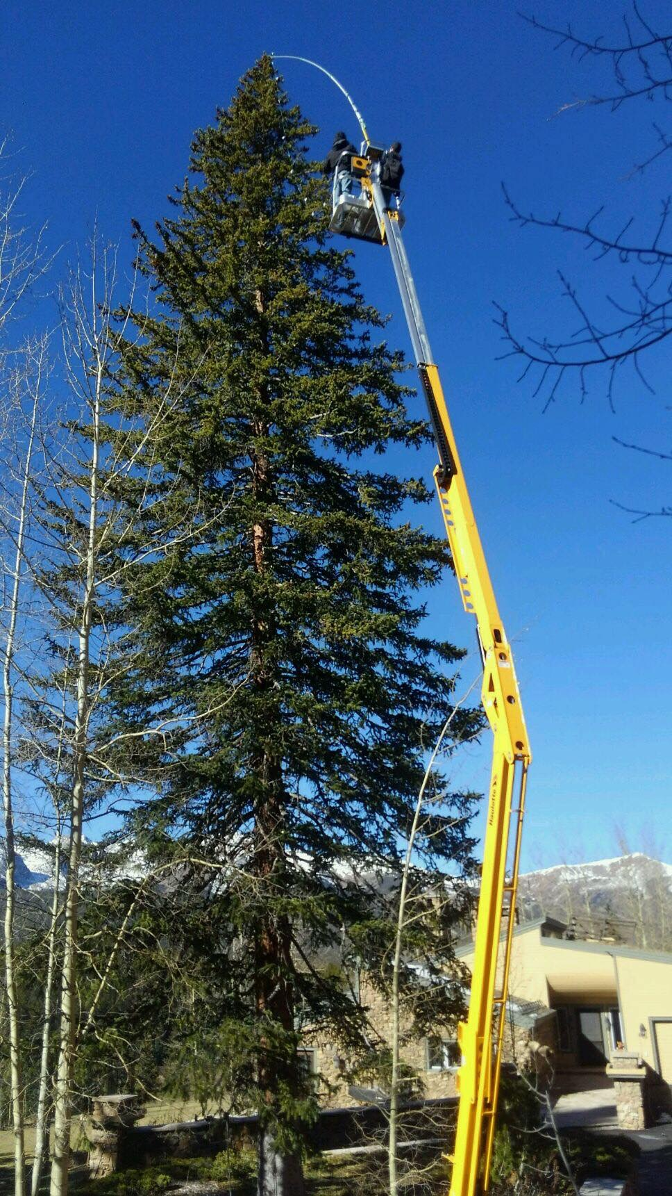 A 90 foot Evergreen Tree Installation at a residence in Breckenridge, Colorado