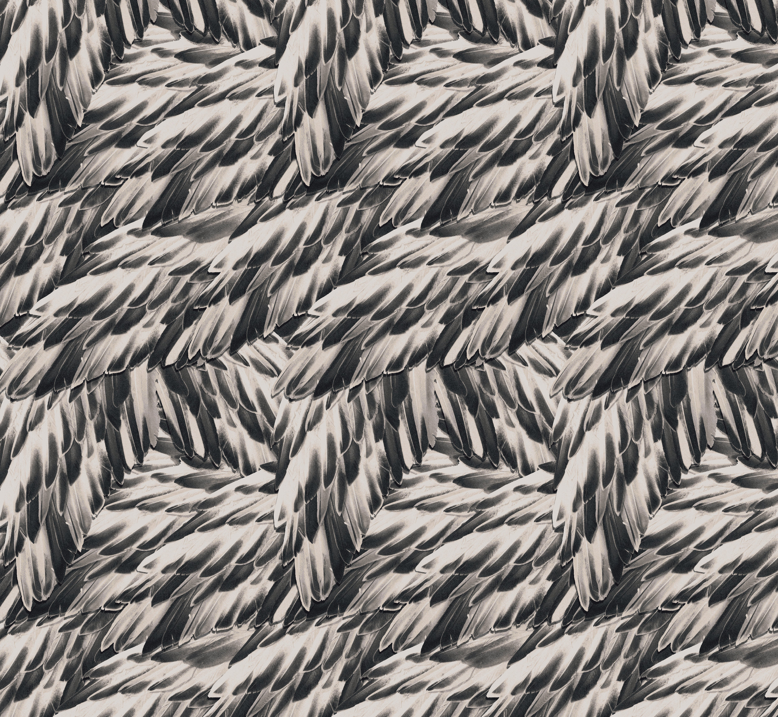 Marie Oliver F16 Feathers Print