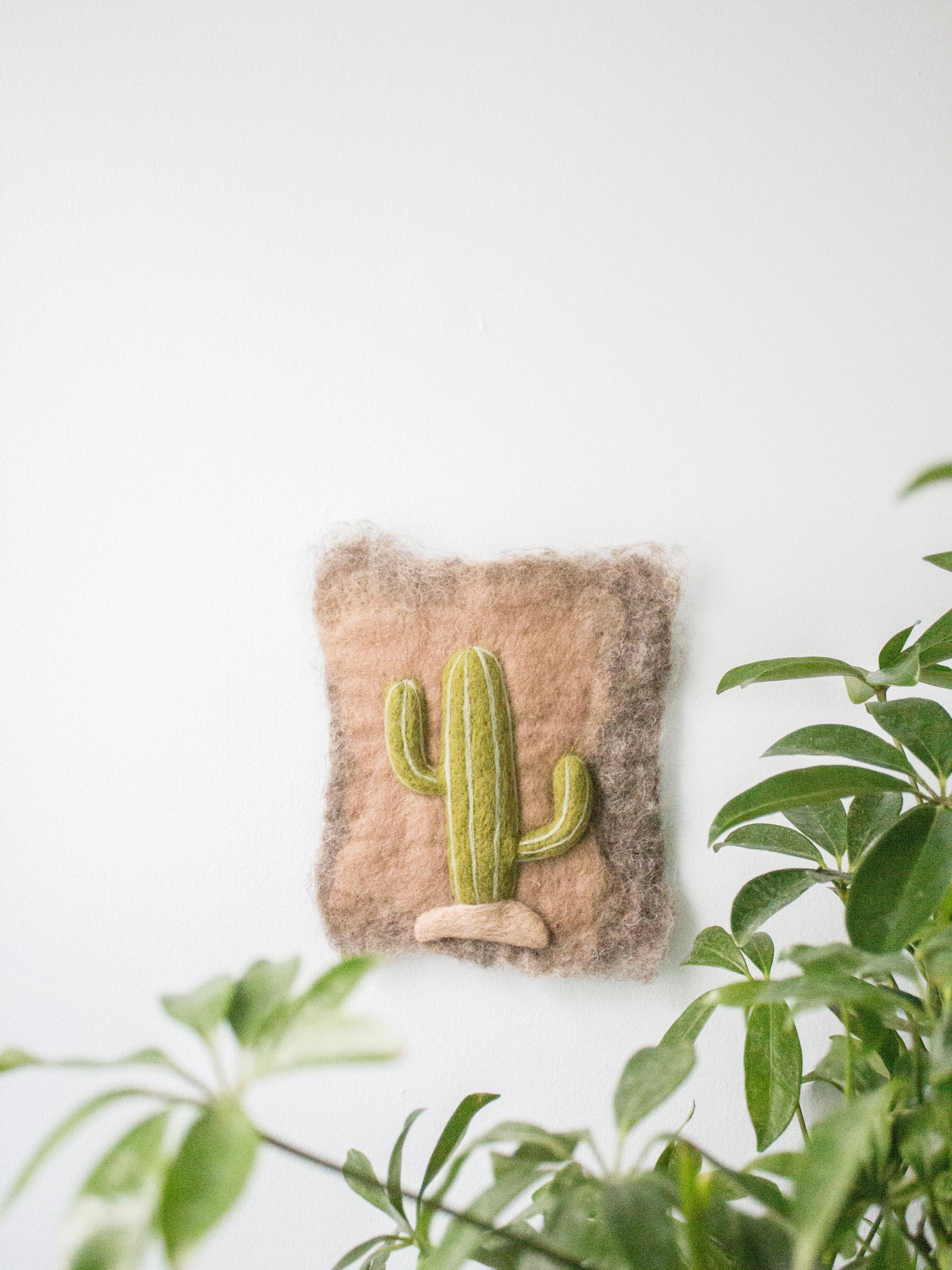 Saguaro Cactus 1