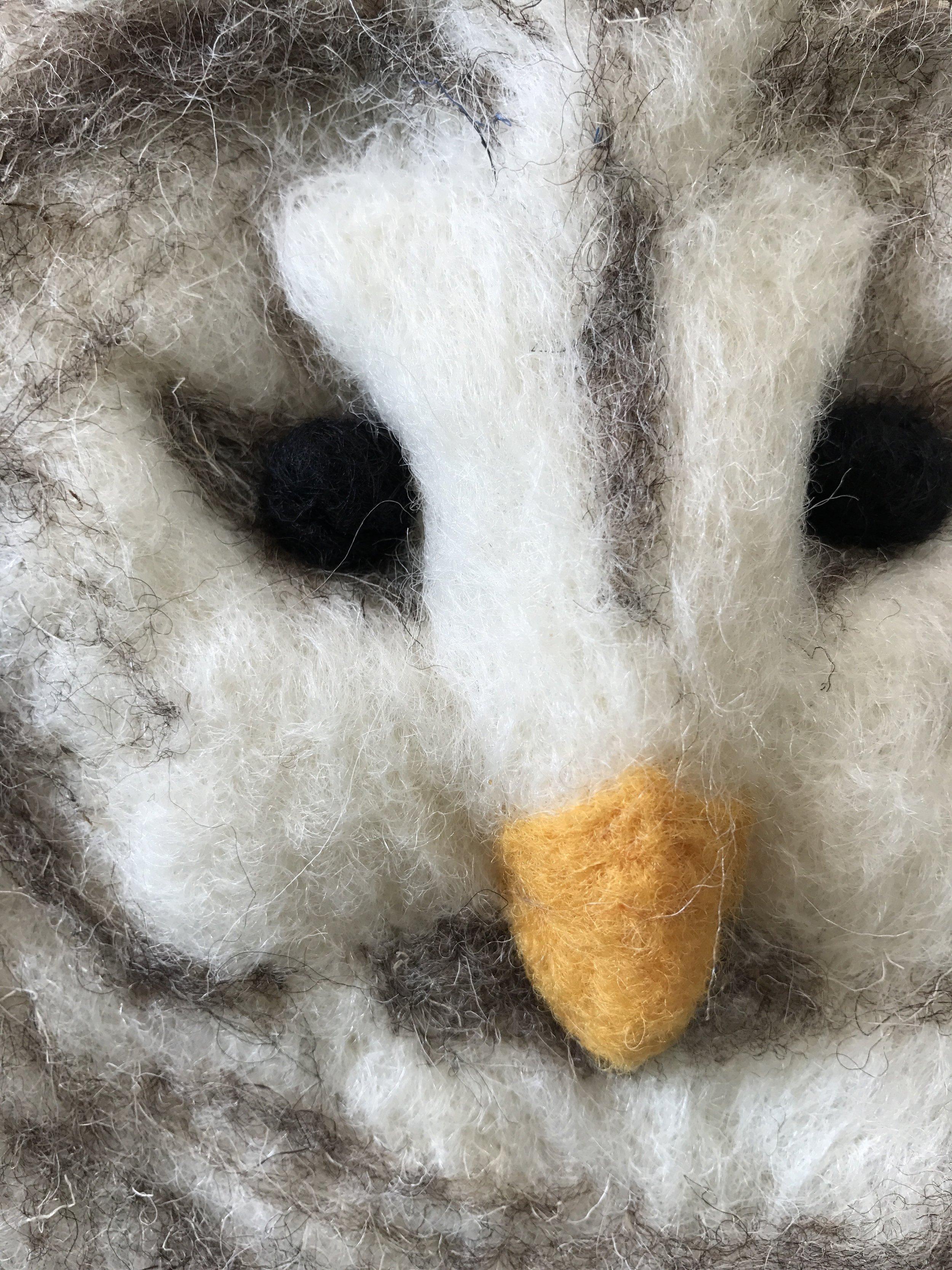Detail of Snowy Owl