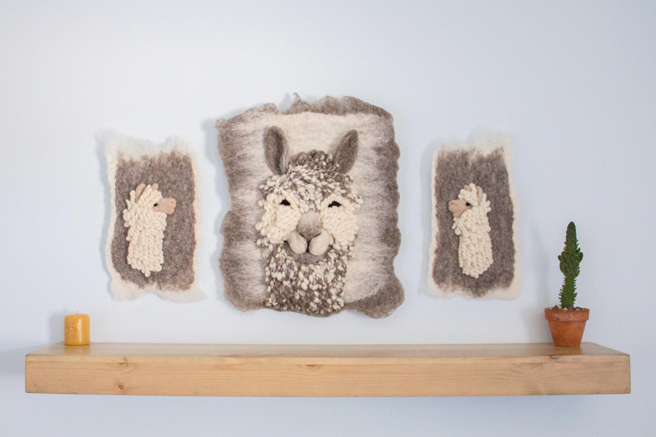 Suri Alpaca Triptych