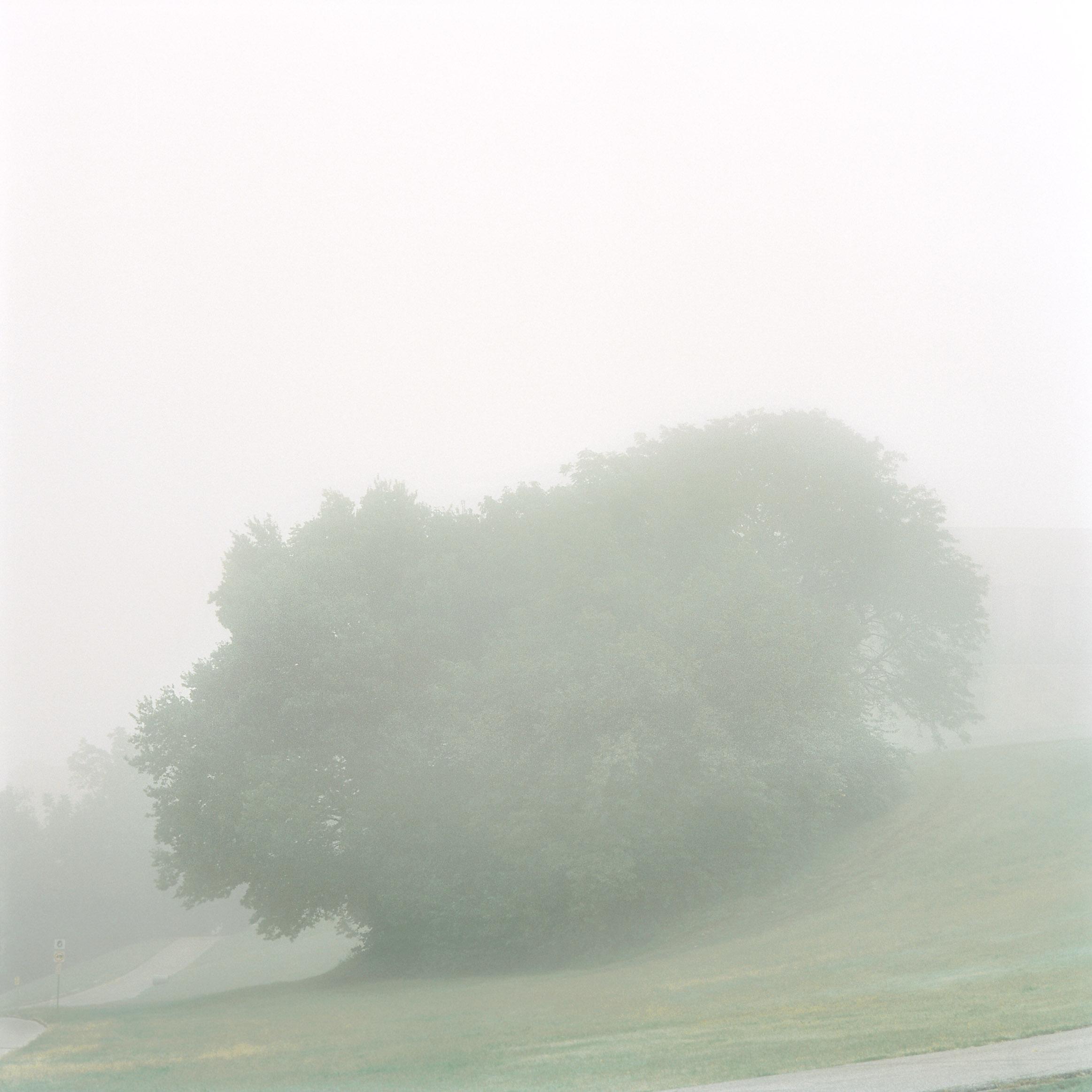 Penn Valley Park 98-08.06.jpg