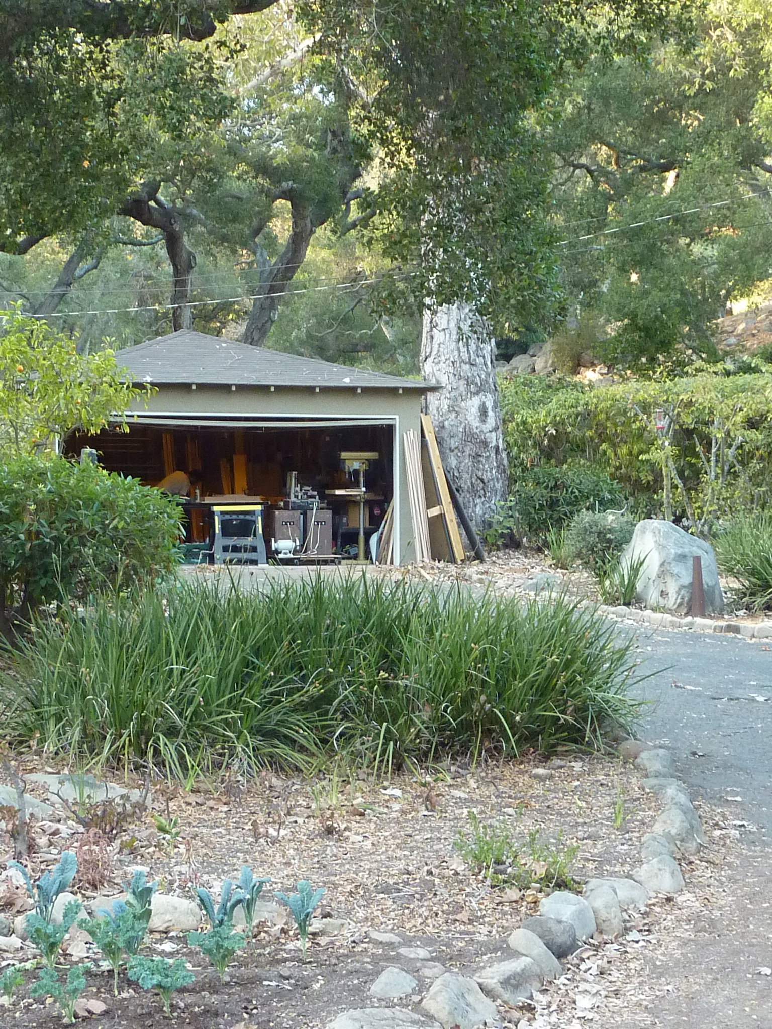 Stormy Monday- Killscrow Compound. Santa Barbara CA. Hike up to woodshop.
