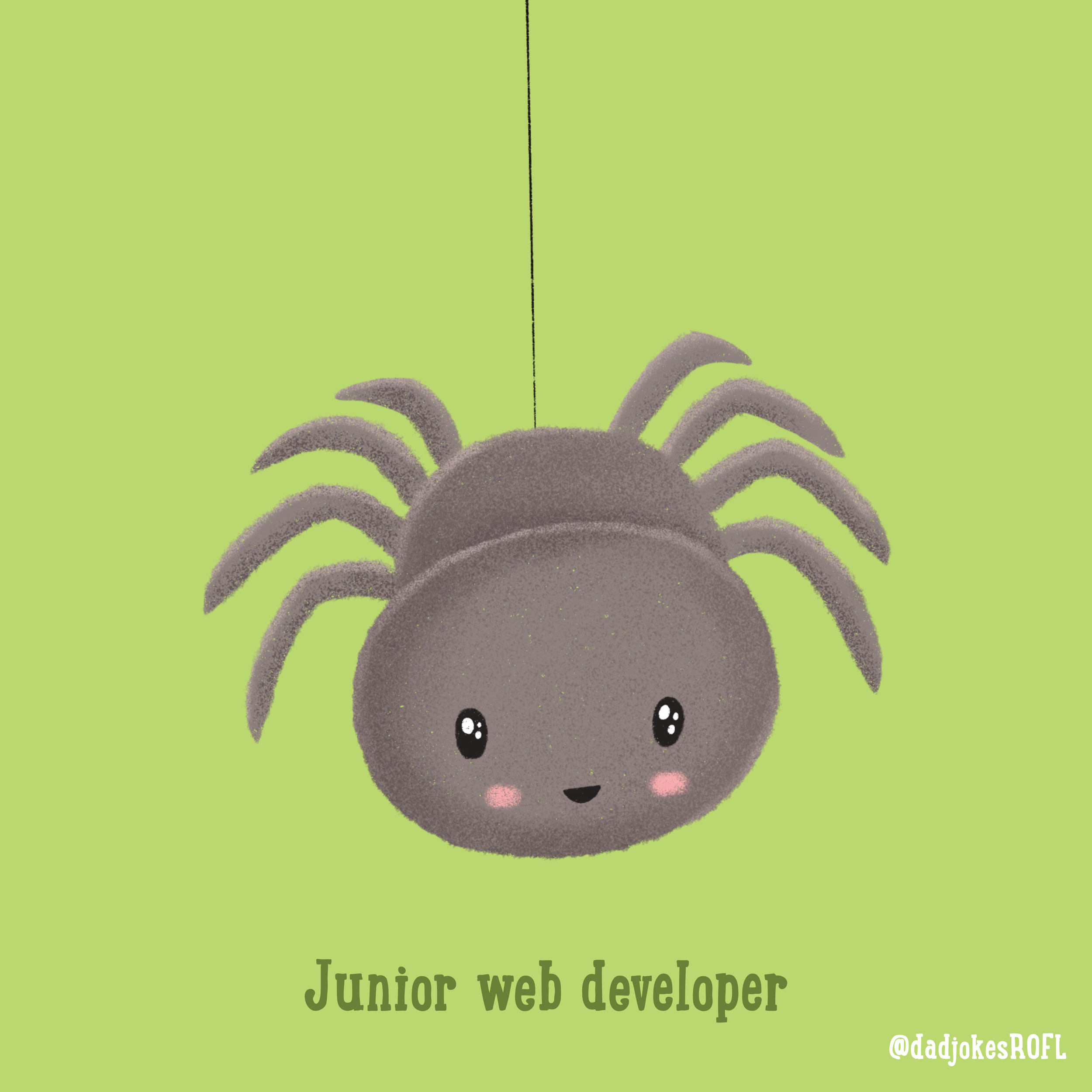 Junior web developer