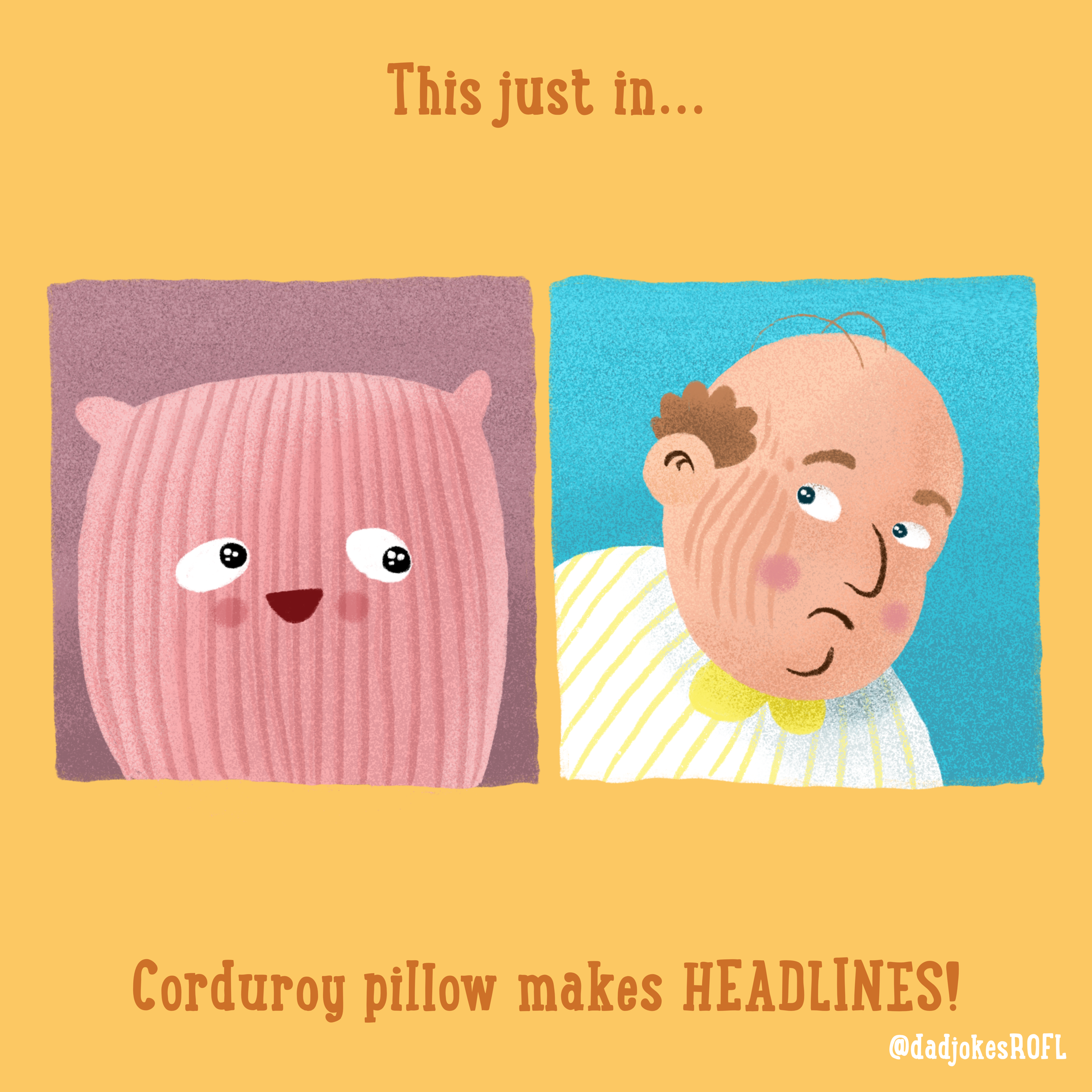 This just in... Corduroy pillow makes HEADLINES!