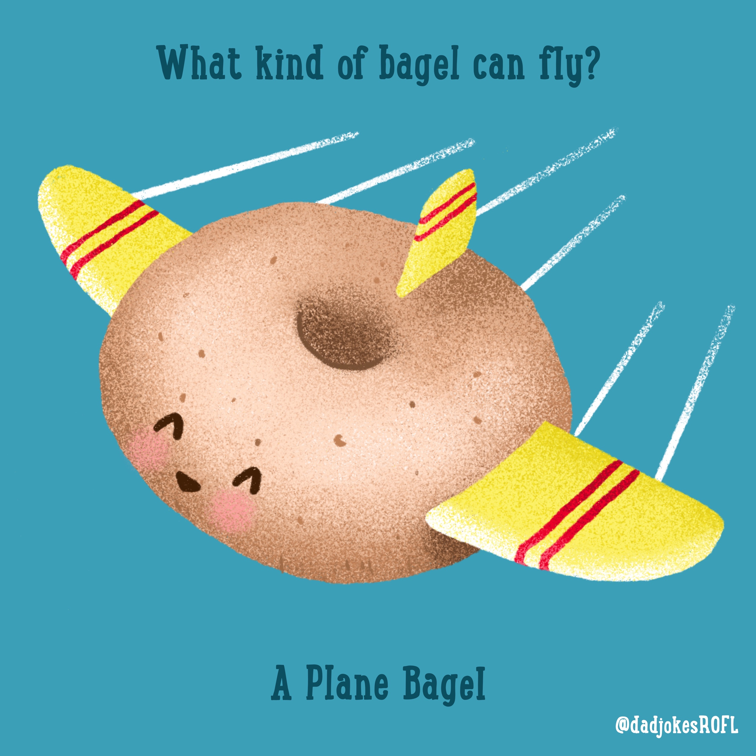 What kind of bagel can fly? A plane bagel