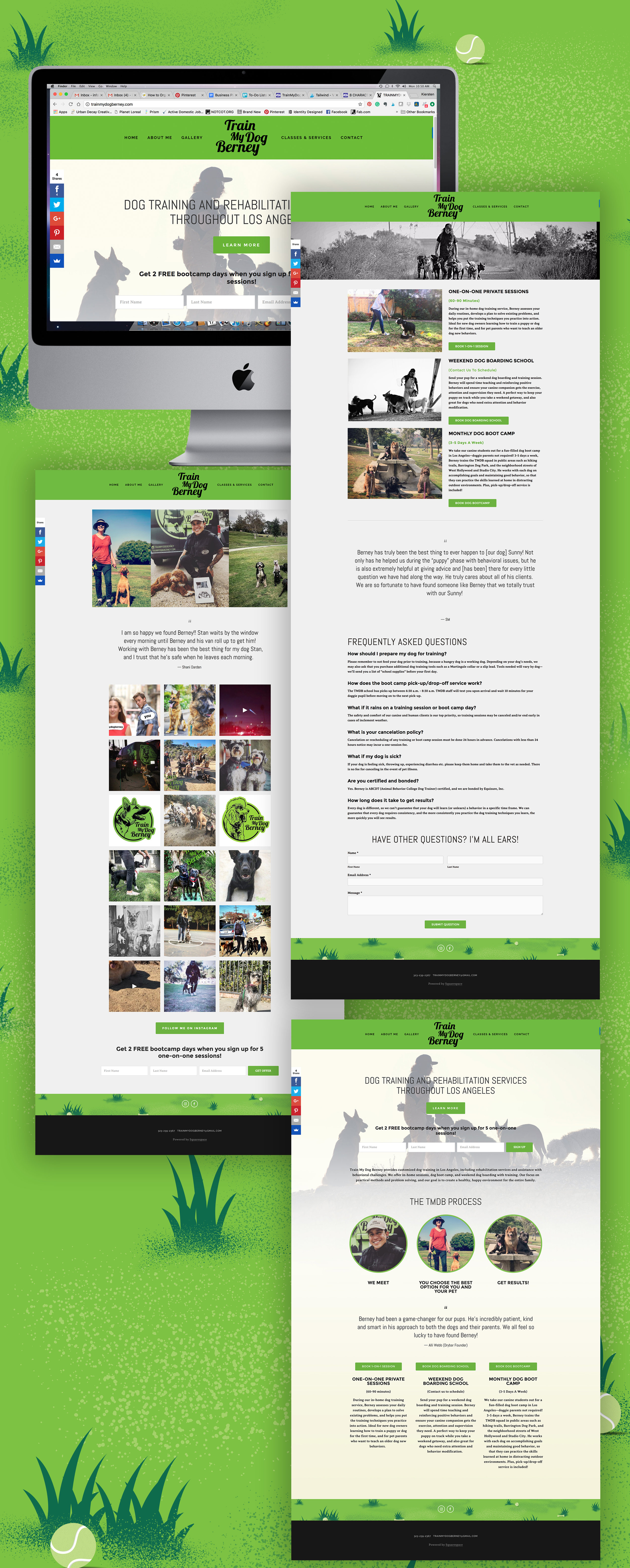 Train My Dog Berney Identity | EyeSavvy Design Studio | Website design, Layout design #BrandDesign #Pattern #BrandIdentity #Logo #Design #VisualBrand
