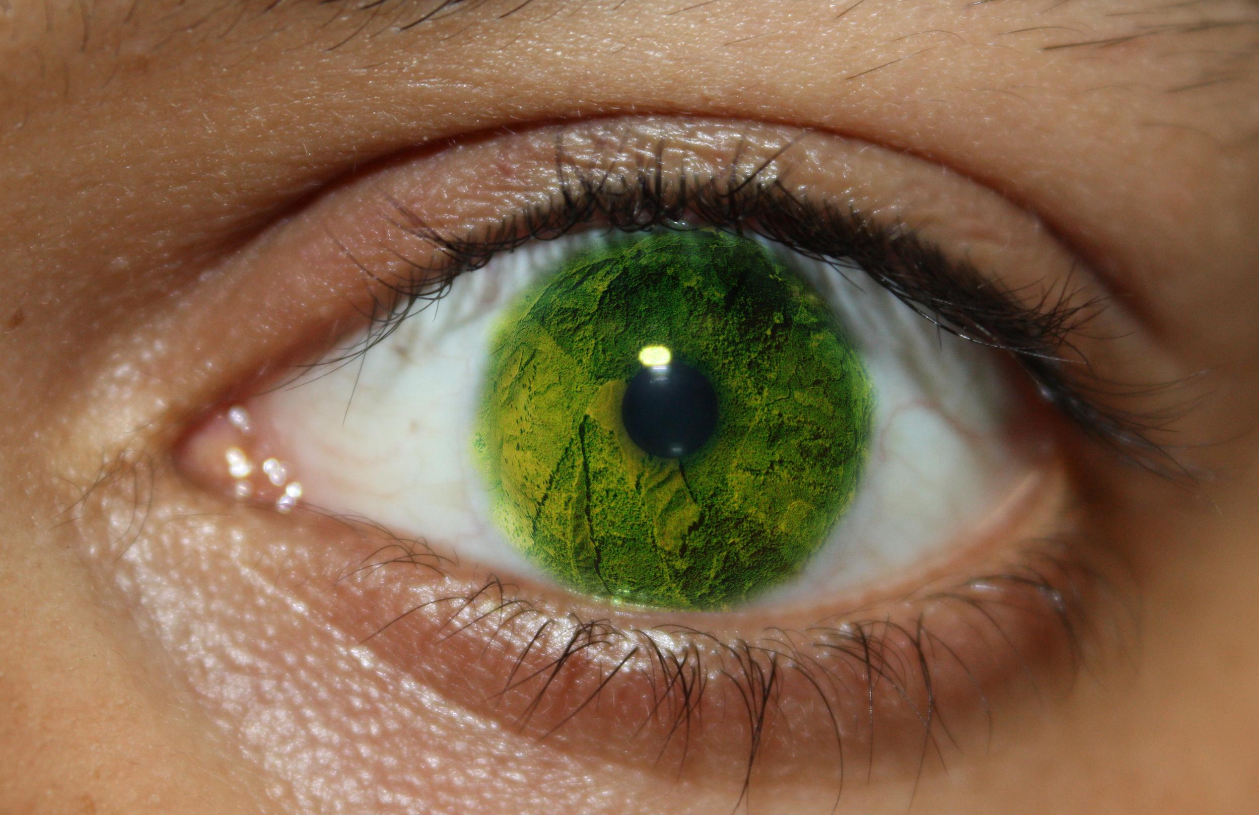 pupil 3 bright.jpg