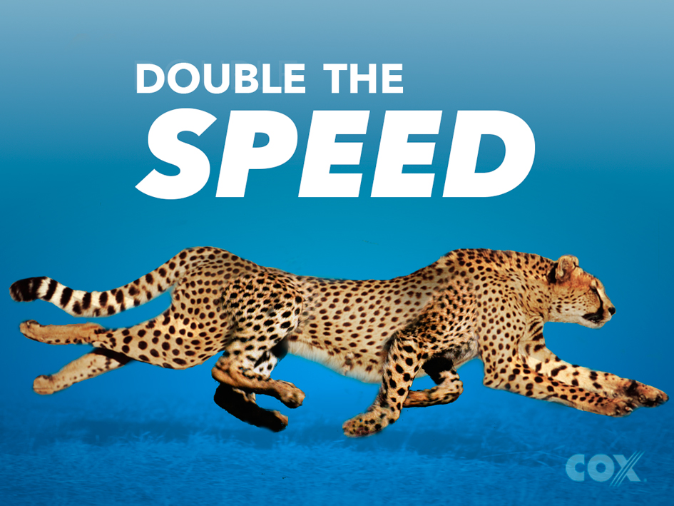 8 legged cheetah followed by attempts