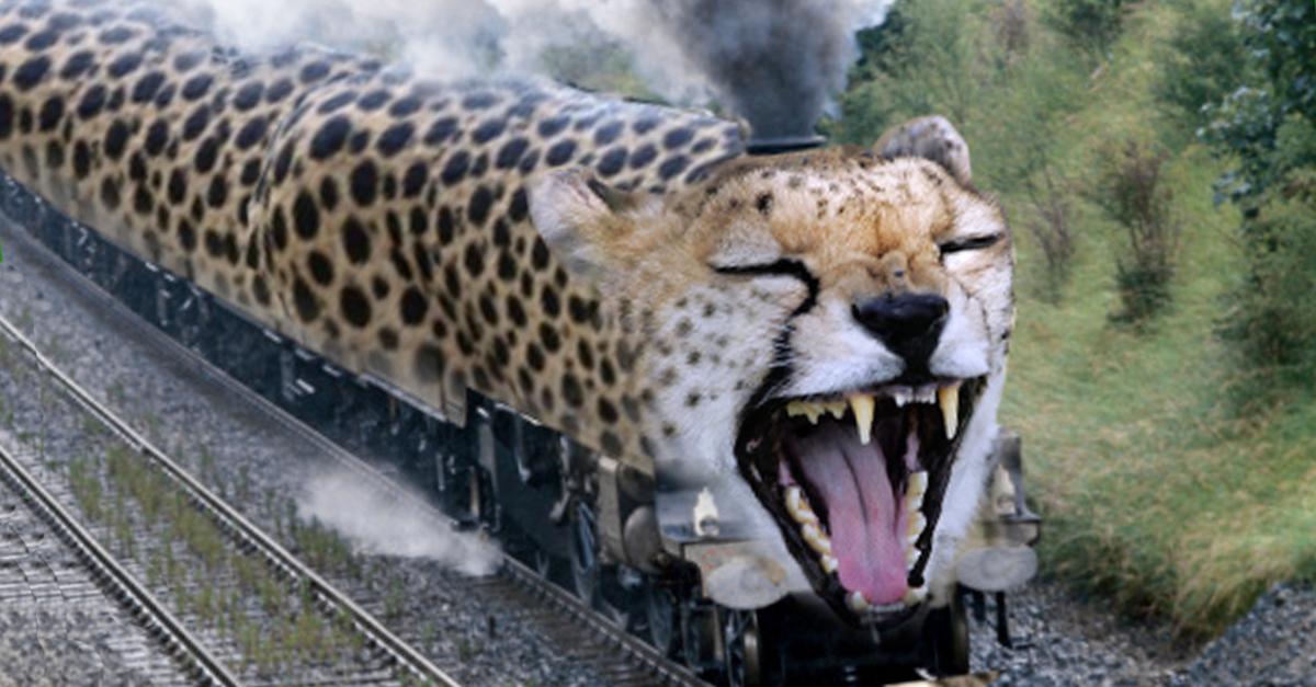 Chee Chee Train