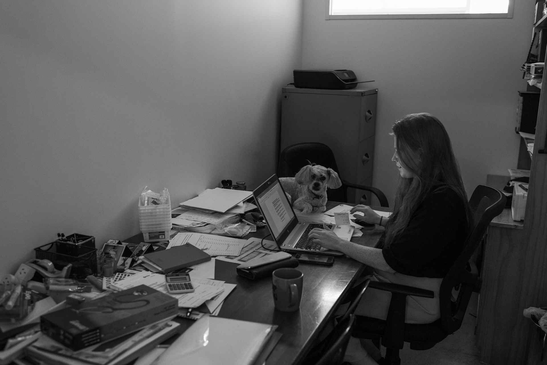 Billy sits with his owner, Practice Manager Bri Smith, who likes working in a dimly lit office.  5 March, 2018.
