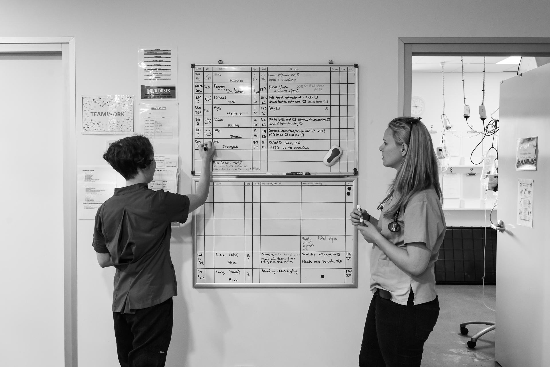 Dr Gwen Shirlow ( left ) and Head Nurse Stephanie Robertson assign veterinarians to hospital patients who can be in for surgeries, long-running tests or observations.  14 December, 2017.