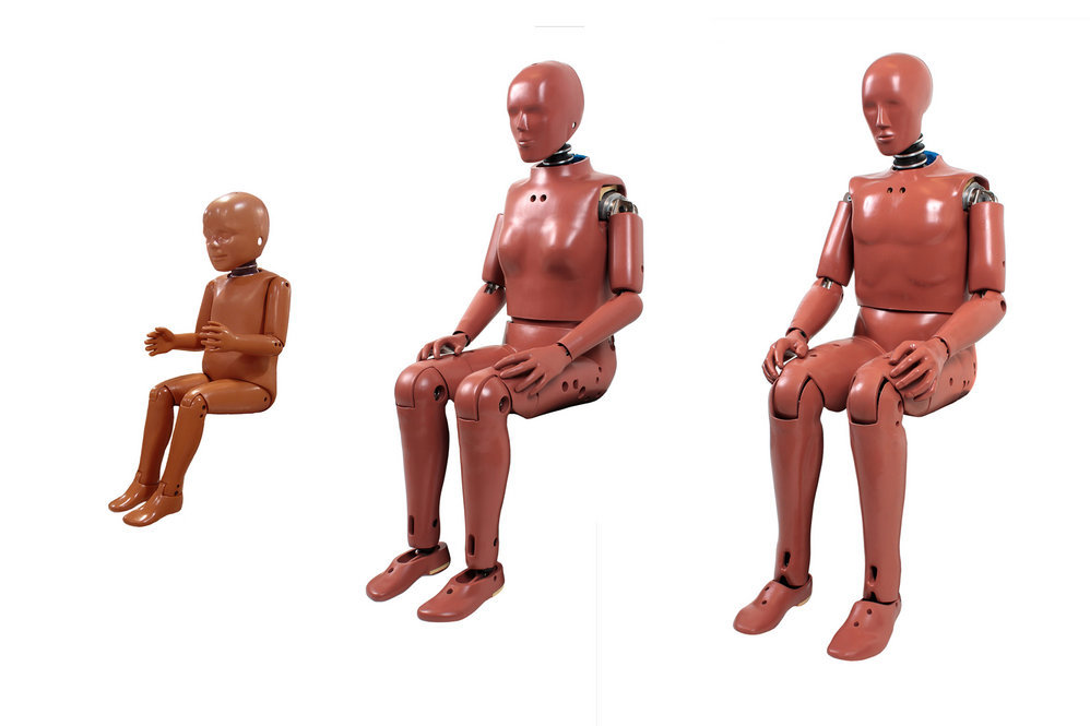 Only recently have crash test dummies in forms other than adult male-sized come into widespread use.