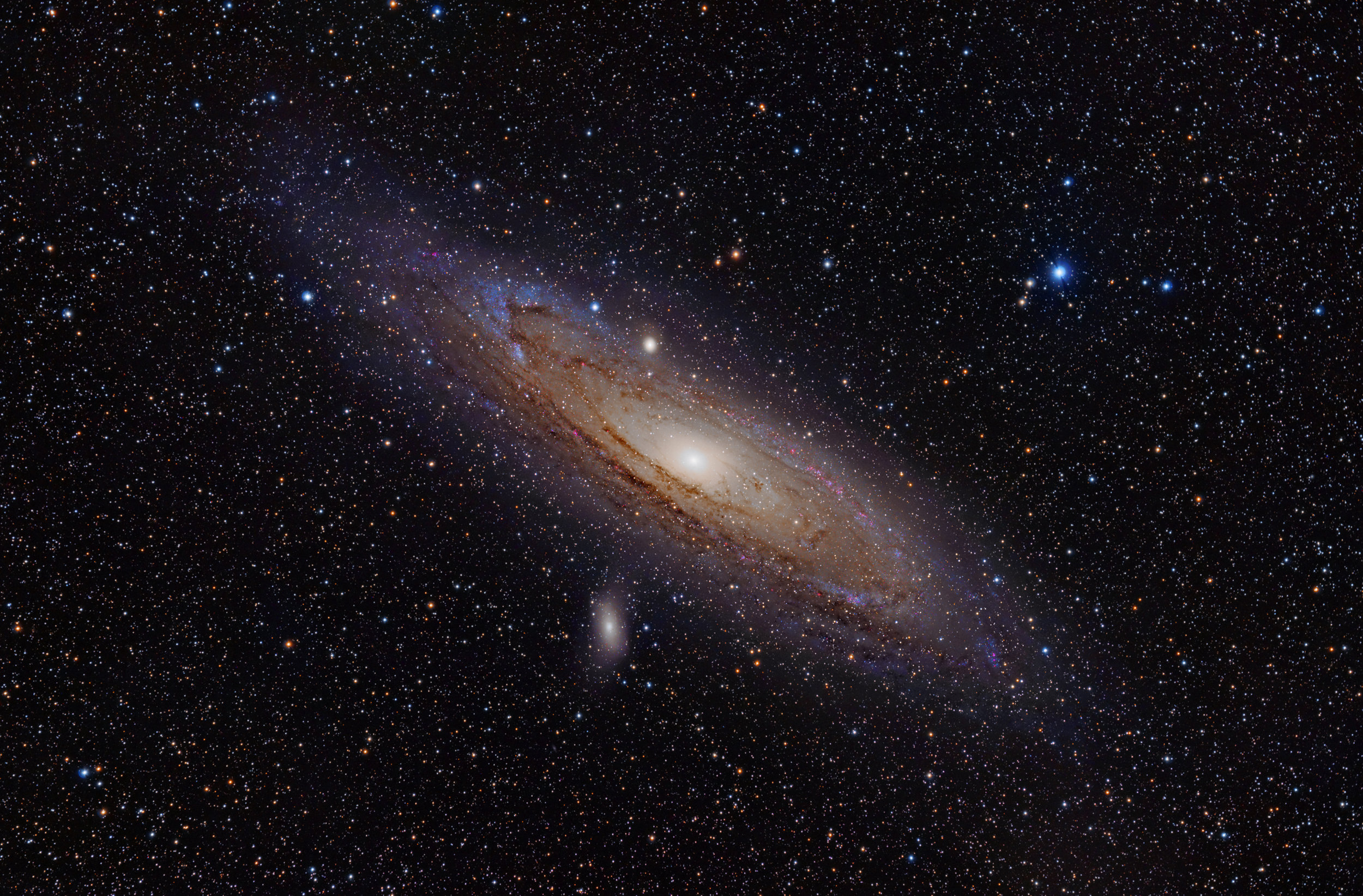 A scenario on the test asked students to gather and synthesize different kinds of information about an image of the Andromeda galaxy.